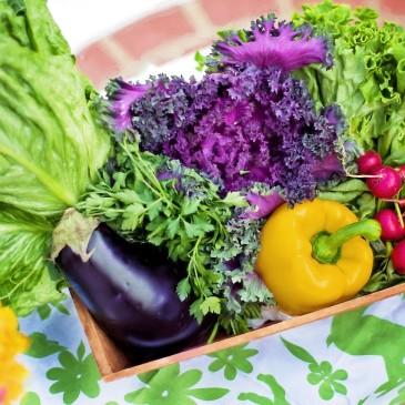 #27 Grow a small vegetable garden